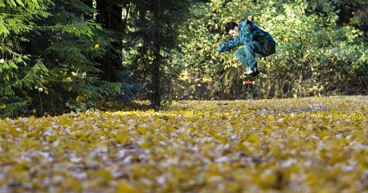 Nice pic: skate d'automne