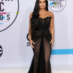 The Best Dressed at the 2017 American Music Awards 475257