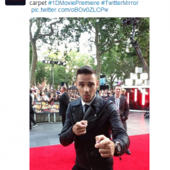Top tweets of 2013: Find out who had the year's most retweeted message here! 161095